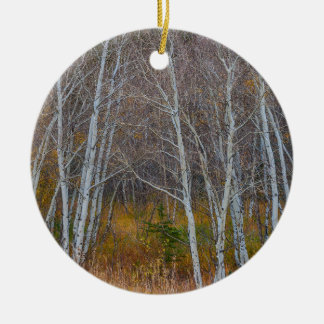 Walk In The Woods Round Ceramic Ornament