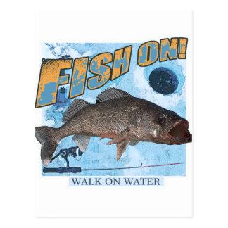 Walk on water walleye postcard