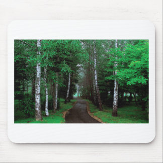 Walk Through The Forest Mouse Pad