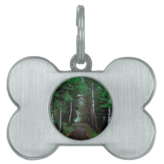 Walk Through The Forest Pet Name Tag