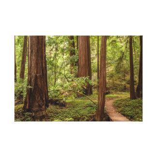 Walk your own path canvas print