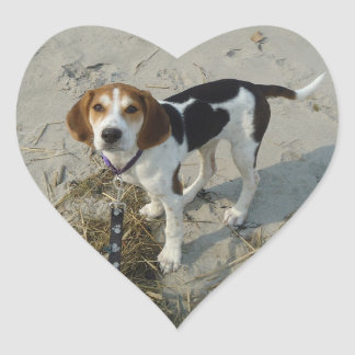 Walker Coonhound stickers
