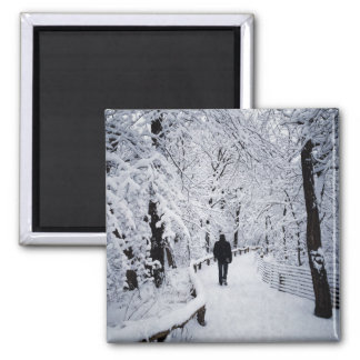Walking In A Winter Wonderland Square Magnet