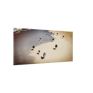 Walking Seagulls On The Beach Canvas Print