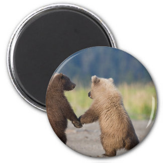 Walking Together Hand In Hand 2 Inch Round Magnet