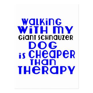 Walking With My Giant Schnauzer Dog  Designs Postcard