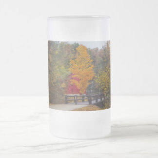 Walkway Bridge To Alley Mill Frosted Glass Beer Mug