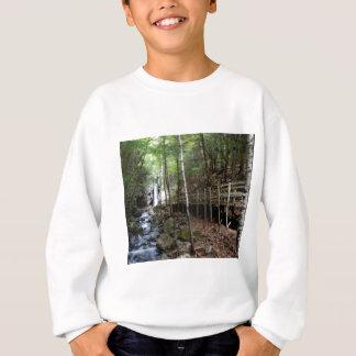 walkway near stream sweatshirt