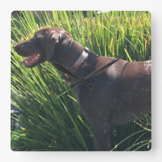 Wall Clock with German Shorthair Pointer