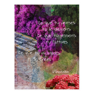 Wall,Nature and message Postcard