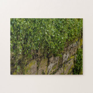 Wall Of Ivy Jigsaw Puzzle