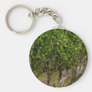Wall Of Ivy Keychain