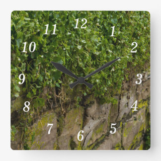 Wall Of Ivy Square Wall Clock