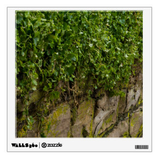 Wall Of Ivy Wall Decal