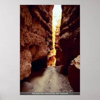 Wall Street, Bryce National Park, Utah rock format Poster