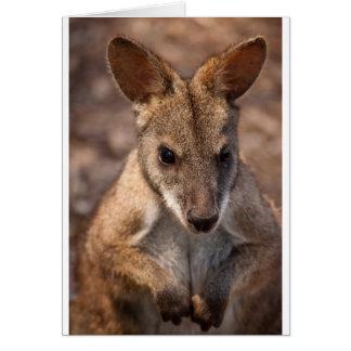 Wallaby greetings card (blank)