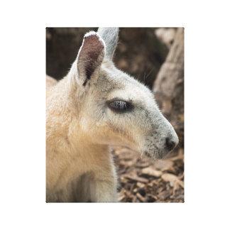 Wallaby Profile Canvas Print