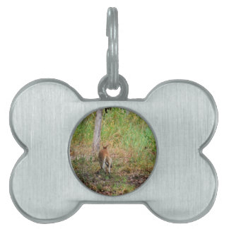 WALLABY RURAL QUEENSLAND AUSTRALIA PET ID TAG
