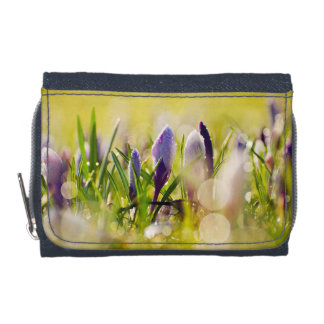 Wallet/ Coin purse/ Flowers Wallets