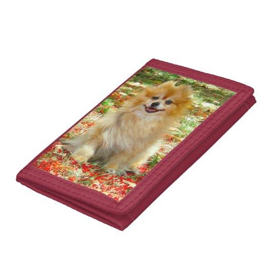 Wallet | Pomeranian Marley in Summer