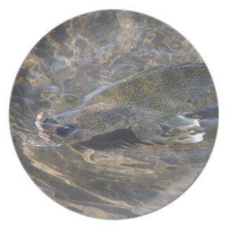 Walleye Caught Plate