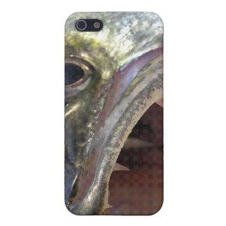 WALLEYE iPhone 5/5S CASES