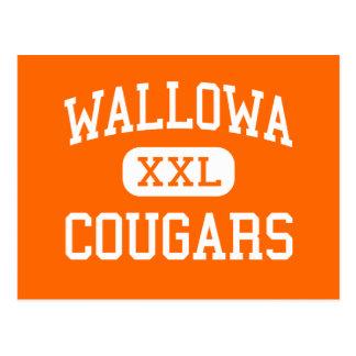 Wallowa - Cougars - High School - Wallowa Oregon Postcard