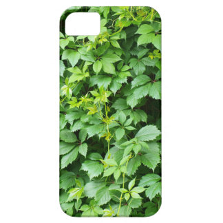Wallpaper from leaves of grapes iPhone 5 cover