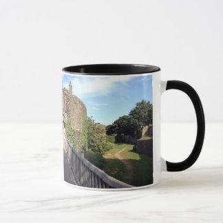 Walmar Castle Panorama Mug