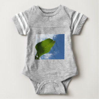 Walnut leaf lit by sunlight against the blue sky baby bodysuit