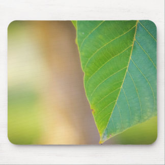 Walnut leaf mouse pad