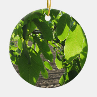 Walnut tree branches with green leaves round ceramic ornament