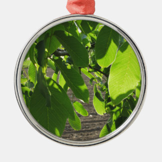 Walnut tree branches with green leaves Silver-Colored round ornament