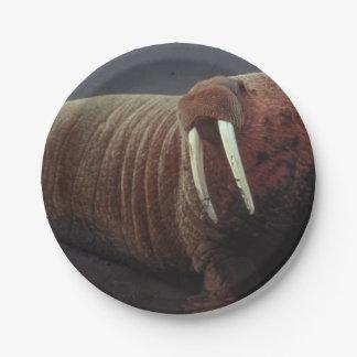 Walrus 7 Inch Paper Plate