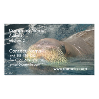 Walrus Face Business Card Templates