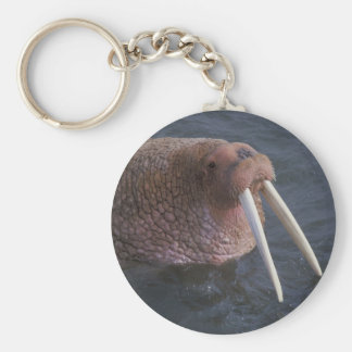 Walrus Keychain