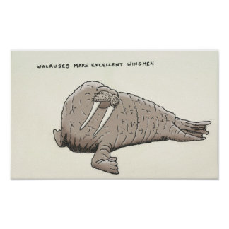 walrus trivia poster