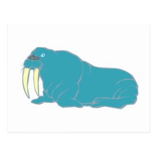 Walrus walrus postcard