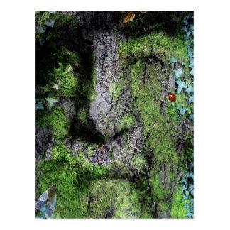 """""""Walt Whitman: The Green Man"""" Postcard"""