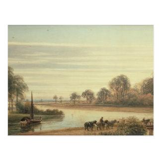 Walton on Thames Postcard
