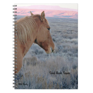 Wanda over looking the Beautiful Sand Wash Basin Notebooks