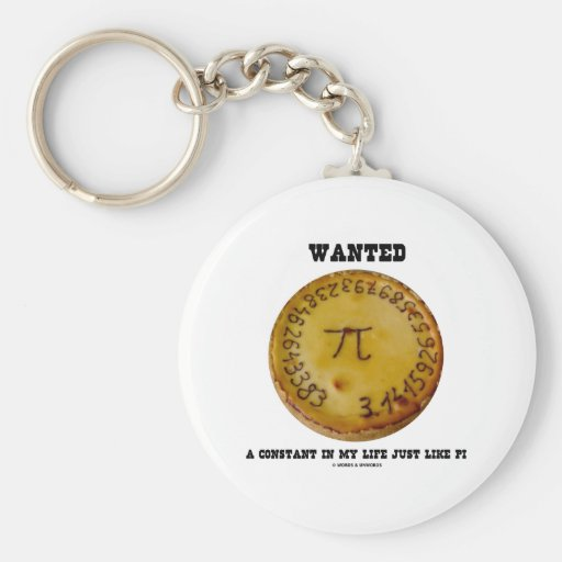Wanted A Constant In My Life Just Like Pi Key Chain