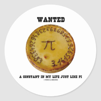 Wanted A Constant In My Life Just Like Pi Round Sticker