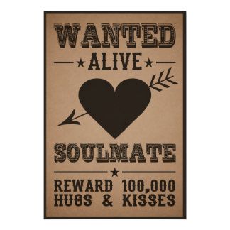 WANTED ALIVE: SOULMATE poster