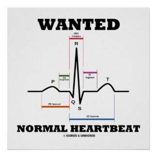 Wanted Normal Heartbeat ECG Electrocardiogram Poster