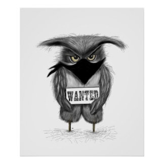 wanted owl poster