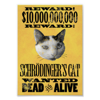 WANTED SCHRODINGER S CAT poster