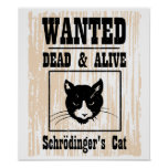 Wanted Schrodinger's Cat
