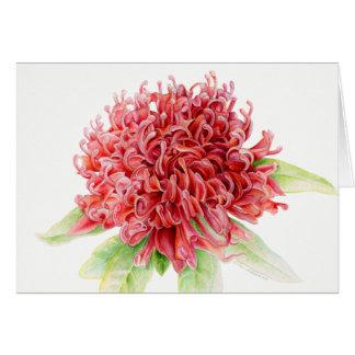 Waratah red floral botanical watercolor art card