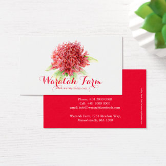 Waratah red flower art farm business card